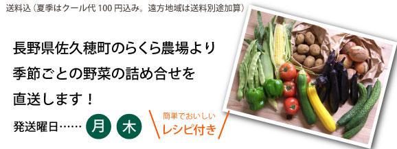 長野県佐久穂町のらくら農場より季節ごとの野菜の詰め合せを直送します!